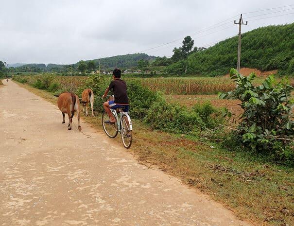 bong-lai-village-landevej-cykel-ko