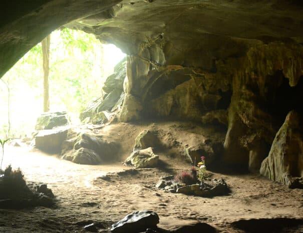 cuc-phuong-grotte