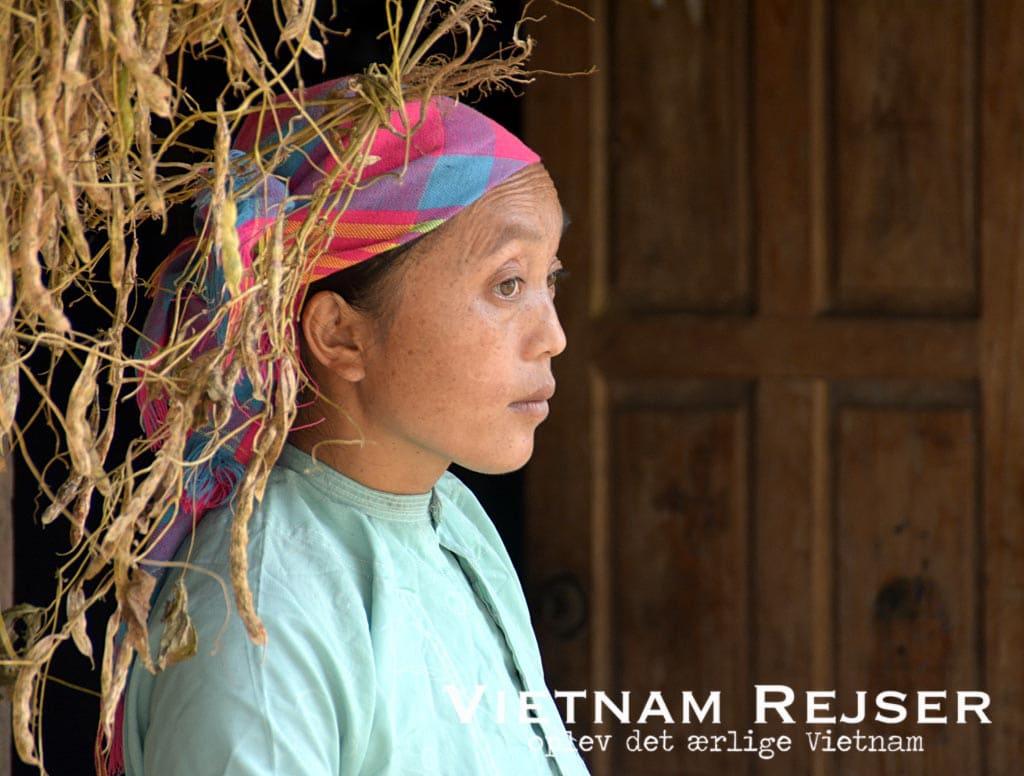 Vietnamesisk kultur - en kvinde fra en af Vietnams mange minoritetsgrupper.