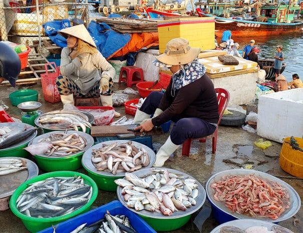 hoi-an-sunrise-tur-fiske-saelger