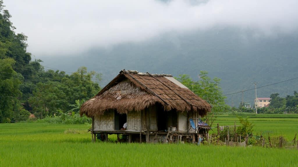 Mai Chau - En lille hytte omgivet af rismarker