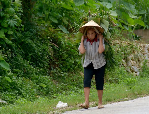 mai-chau-kvinde-vandre