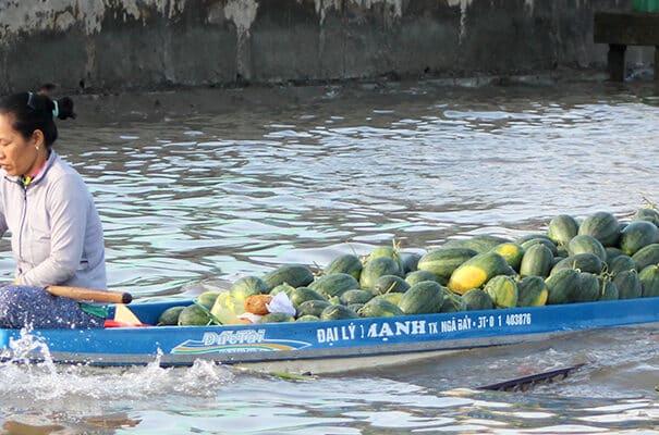 Mekong Delta og Mekong floden