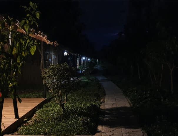 mekong-delta-bungalows-nat
