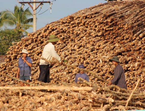 mekong-delta-trae-til-huse