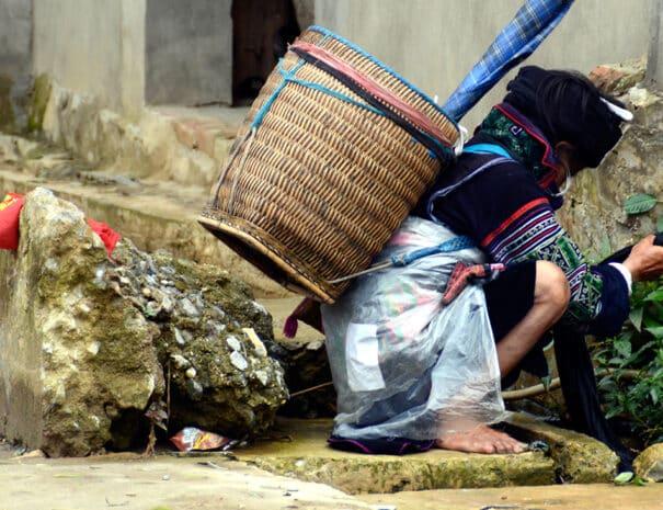 sapa-dame-vasker