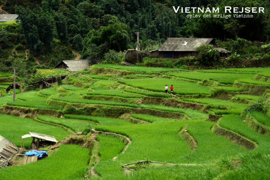 Sapa - Resjer til Vietnam - Vietnam Rejser